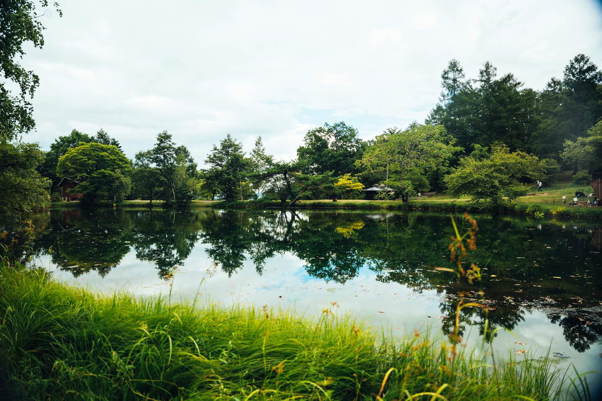 駒出池キャンプ場で念願の初キャンプ!|拠点からの景色